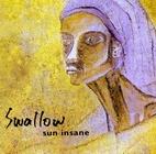 20040107091403-swallow